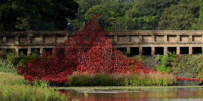 Commemorative poppy display in Yorkshire