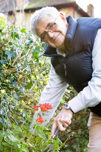 Man gardening whilst wearing an Age UK Personal Alarm wrist alarm